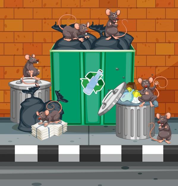 ゴミ箱中の汚いネズミ 無料ベクター