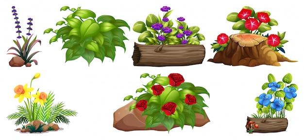 岩と木のカラフルな花のセット 無料ベクター