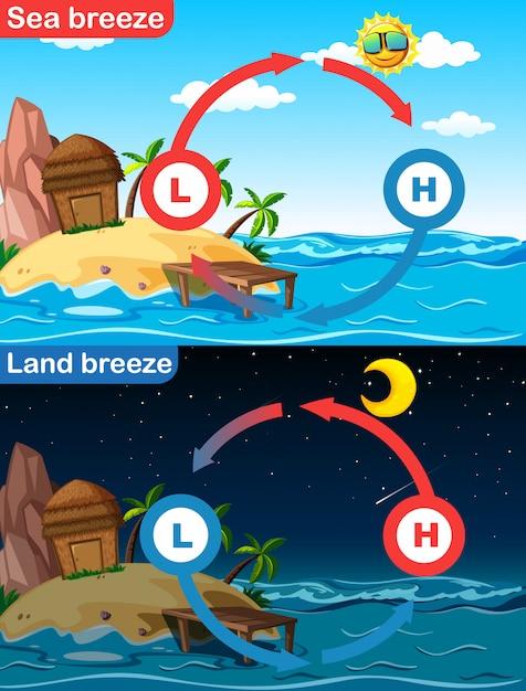 Диаграмма, показывающая морской и наземный бриз Бесплатные векторы
