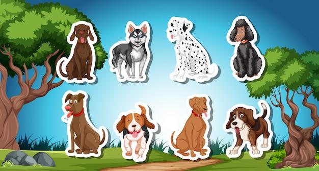Стая собачьих палочек с природным фоном Бесплатные векторы