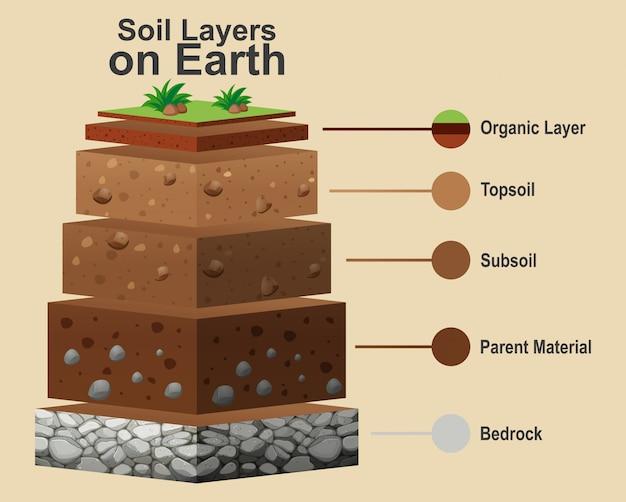 Диаграмма, показывающая различные слои почвы Бесплатные векторы