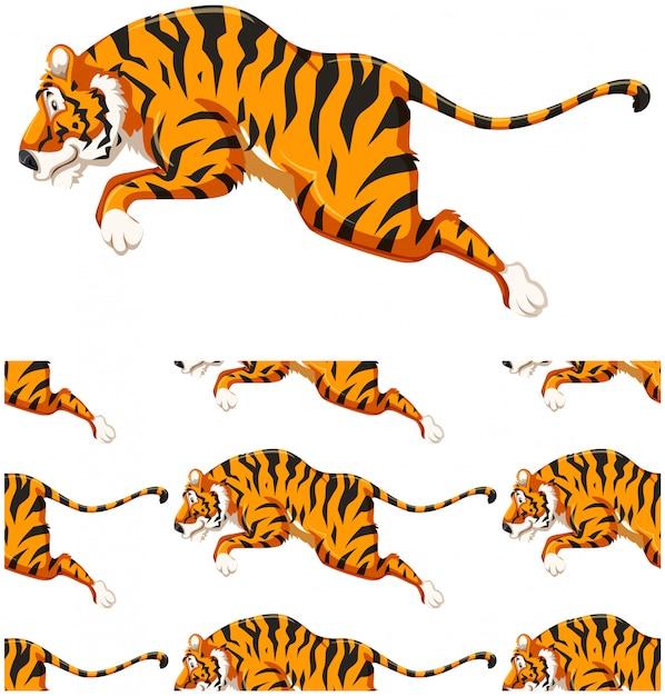 白で隔離される虎シームレスパターン 無料ベクター