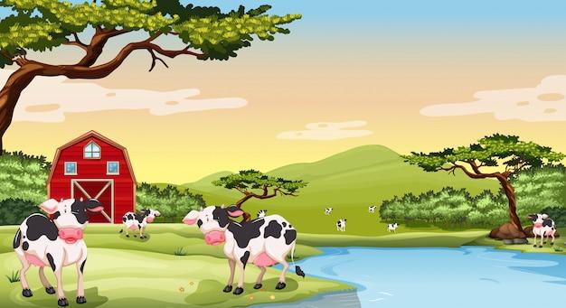牛と農場のシーン 無料ベクター
