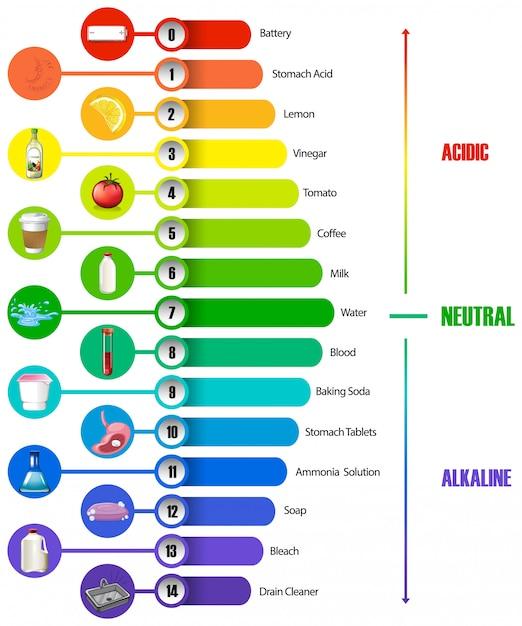 Шкала рн инфографики Бесплатные векторы