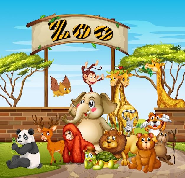 動物園の多くの動物 無料ベクター