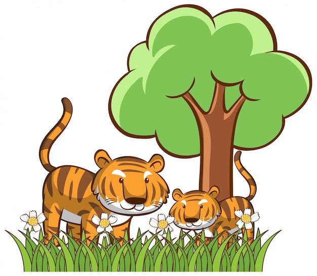 Изолированные тигры в саду Бесплатные векторы