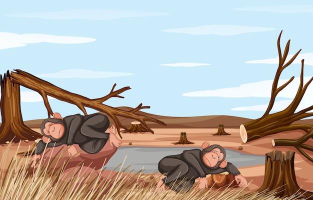 Сцена обезлесения с двумя обезьянами Бесплатные векторы