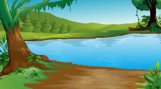 Фоновая сцена с деревьями и озером Premium векторы