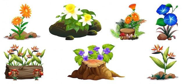 Большой набор красочных цветов на скалах и дереве Бесплатные векторы