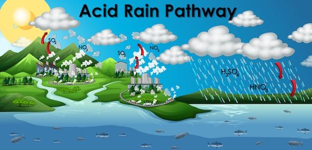酸性雨経路を示す図 無料ベクター
