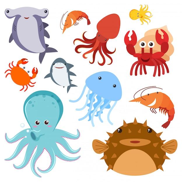 Набор морских животных Бесплатные векторы