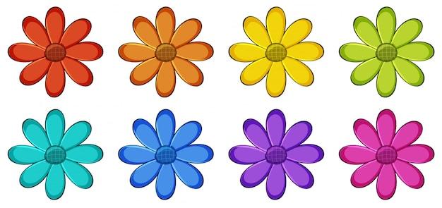 花の分離セット 無料ベクター