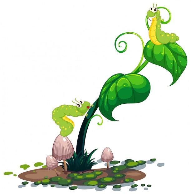 Растение с гусеницами Бесплатные векторы