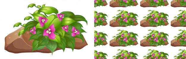 石の上のピンクの花でシームレスな背景デザイン 無料ベクター