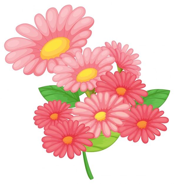 白地にピンクの花 無料ベクター