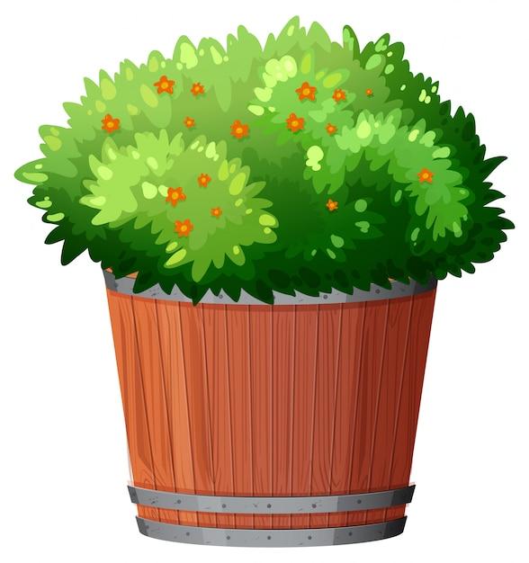 孤立した白い背景の上の緑の葉と鉢植え 無料ベクター