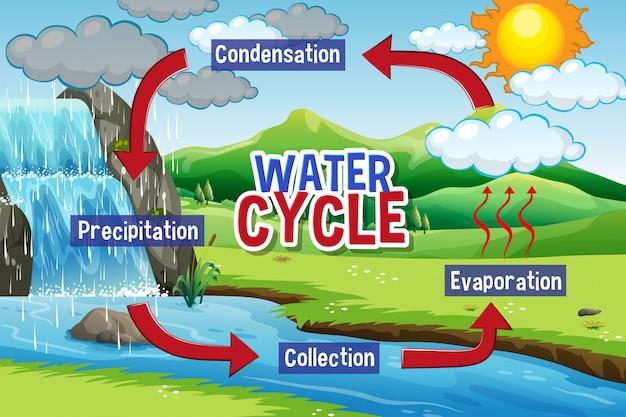 地球上の水循環プロセス 無料ベクター