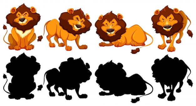 Силуэт, цвет и контурная версия львов Бесплатные векторы