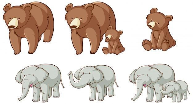 Изолированные медведи и слоны Бесплатные векторы