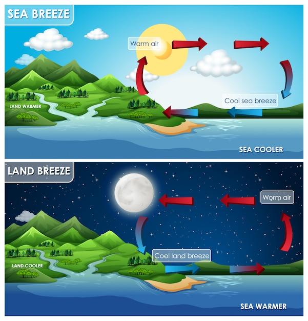 陸と海のそよ風の科学インフォグラフィック 無料ベクター