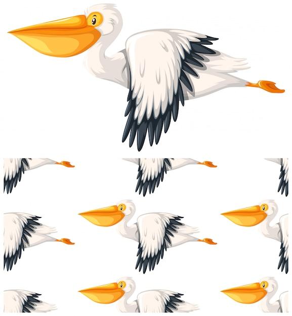 Бесшовные пеликан, изолированные на белом Бесплатные векторы