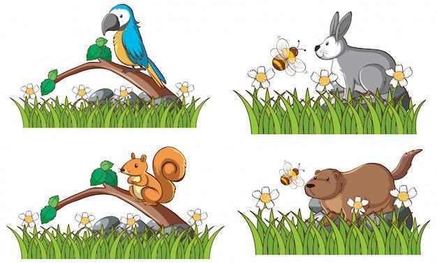Четыре вида животных в саду Бесплатные векторы