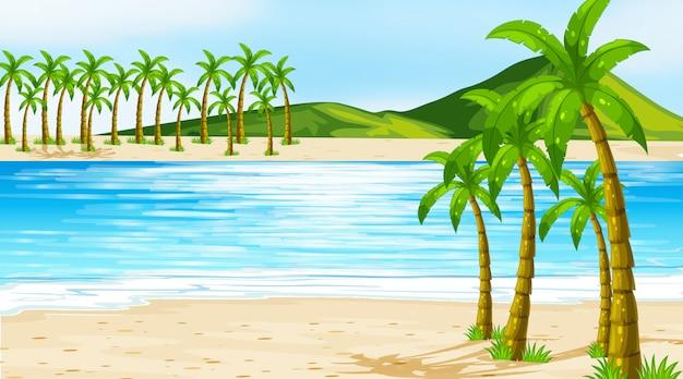 Иллюстрация сцена с кокосовыми пальмами на пляже Бесплатные векторы