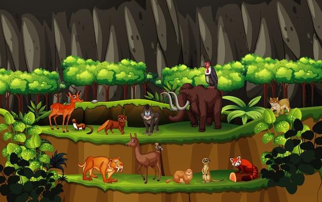 Сцена со многими животными в лесу Бесплатные векторы