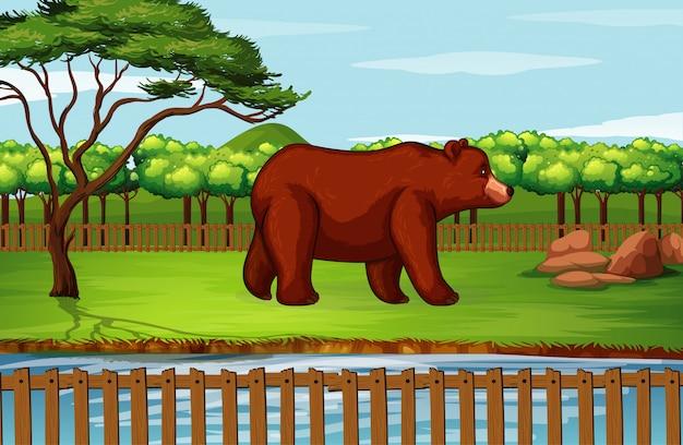 動物園のハイイログマとのシーン 無料ベクター