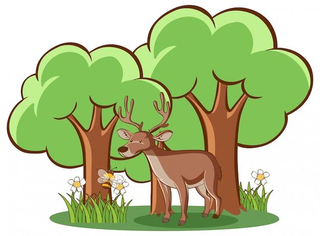 白い背景の上の森の鹿 無料ベクター