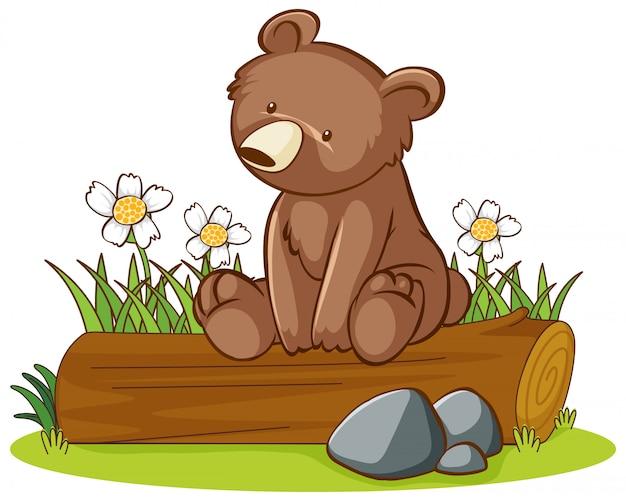 かわいいクマの分離画像 無料ベクター