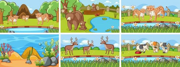 野生の動物の背景シーン Premiumベクター