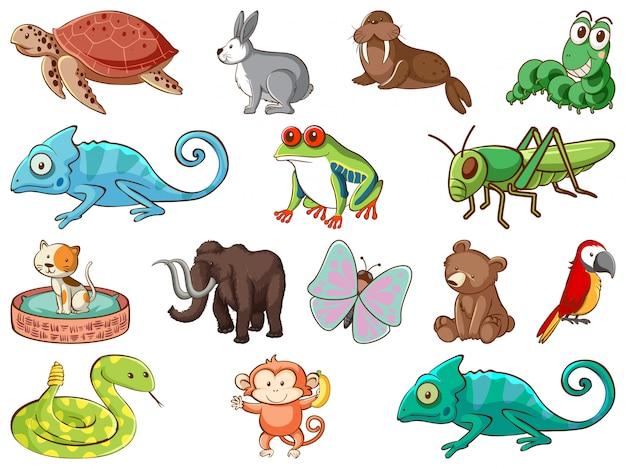 多くの種類の動物が生息する野生生物の大規模なセット 無料ベクター