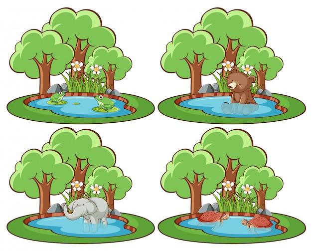 池と木と公園の野生動物のセット 無料ベクター