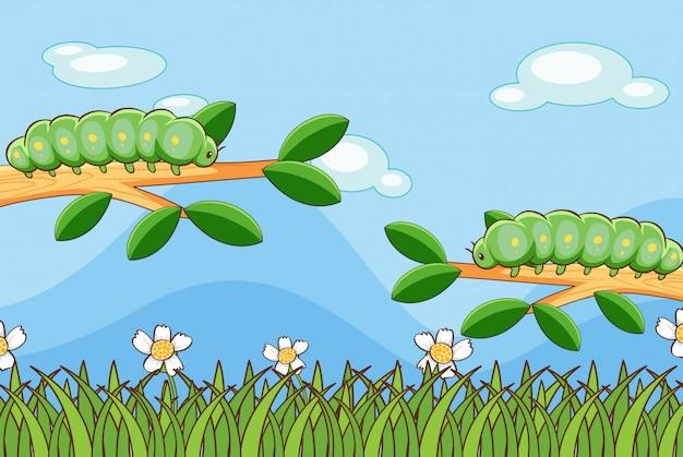 Сцена с гусеницами на ветках Бесплатные векторы