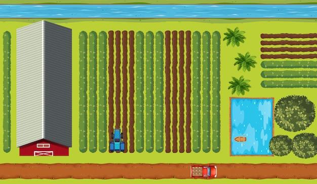Вид сверху сельхозугодий с посевами Бесплатные векторы