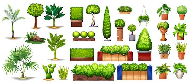 Разные виды растений Premium векторы