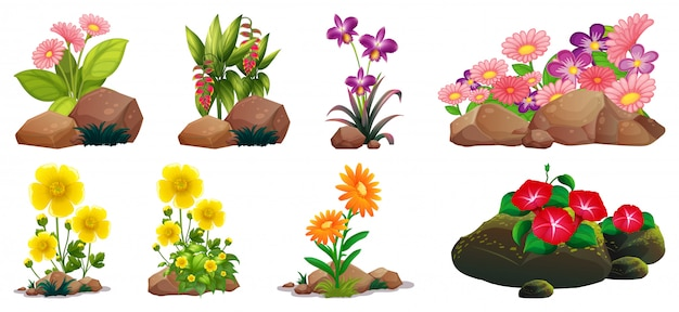 岩と木のカラフルな花の大規模なセット 無料ベクター
