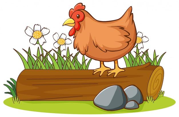 ログに鶏の分離画像 無料ベクター