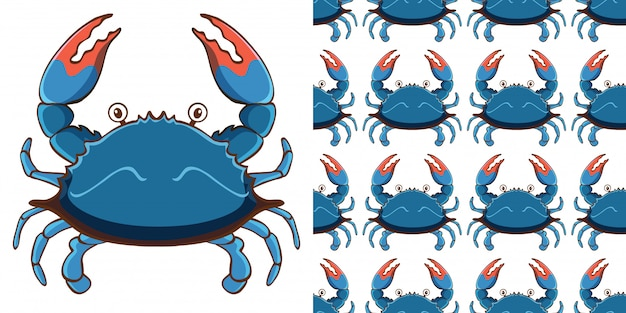Freshwater crab Crayfish as food Dungeness crab American lobster ... | 313x626