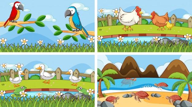 Сцены животных в дикой иллюстрации Бесплатные векторы