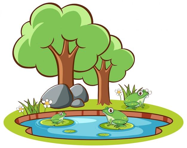 池のカエルの描かれた分離手 無料ベクター