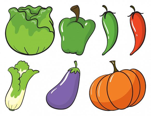 Большой набор фруктов и овощей на белом фоне Бесплатные векторы