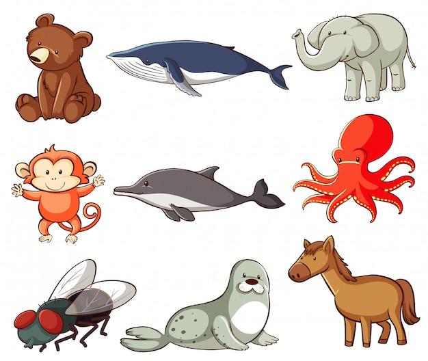 多くの種類の動物がいる野生生物の大規模なセット 無料ベクター