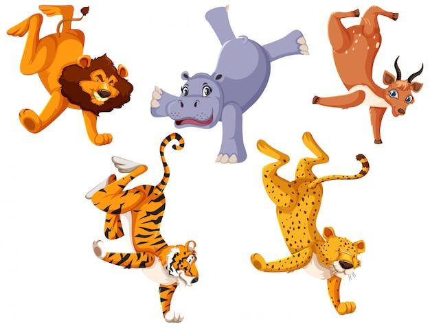 Набор диких животных, стоящих на одной руке Бесплатные векторы
