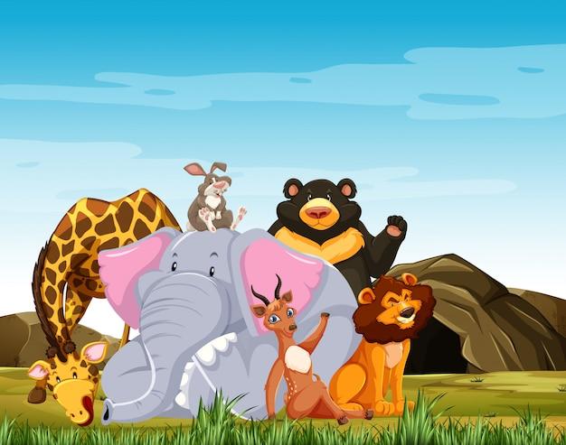 野生動物グループが森の背景に分離された笑顔漫画のスタイルをポーズします。 無料ベクター