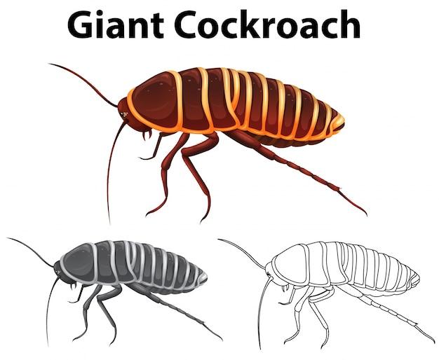 巨大なゴキブリのための落書き動物 無料ベクター