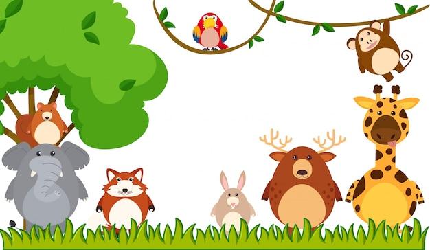 Различные виды животных в парке Бесплатные векторы