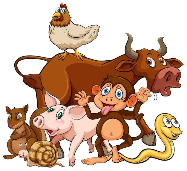 Животные Бесплатные векторы