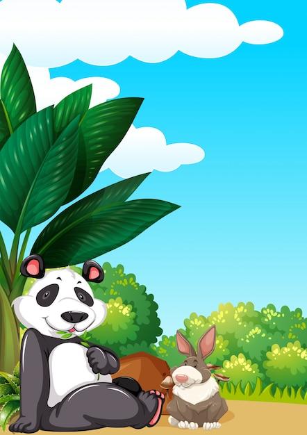 Панда и кролик картинка